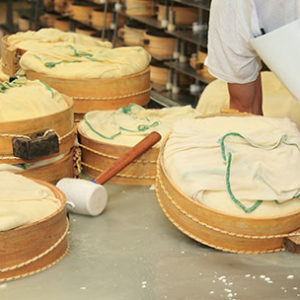 Dairy - cheese processing